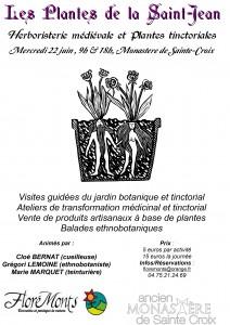 Plantes-de-la-Saint-Jean-au-Monastère-de-Sainte-Croix